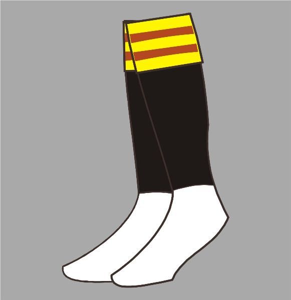 Rugby League Socks 03